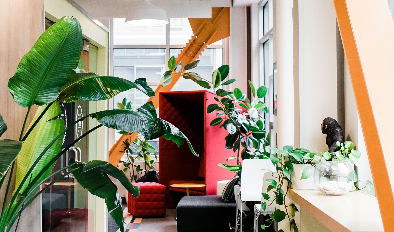 branding and interior design firms salary